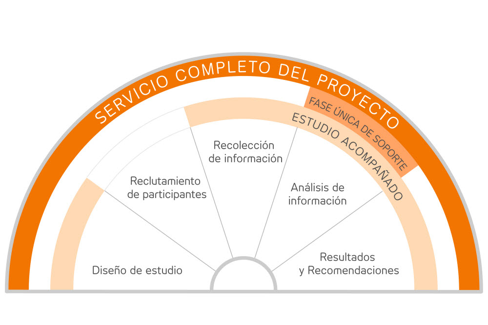 Insight Research Consultants illustration Spanish